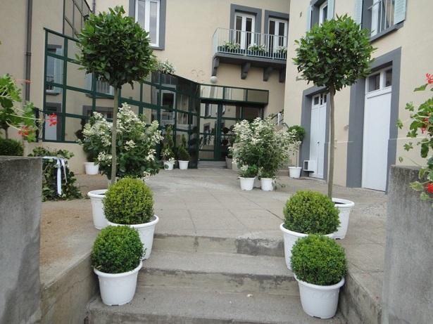 jardin-de-loise-location-plantes-mariage